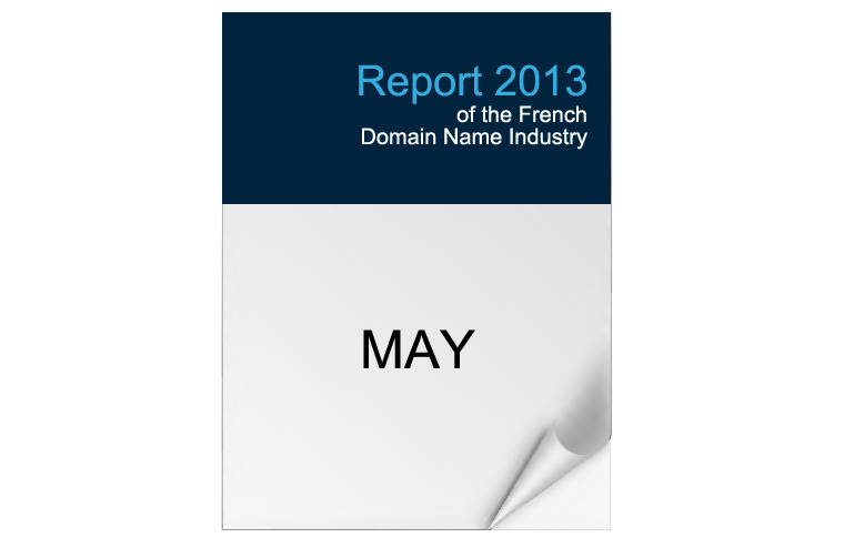 2013 Edition - French Domaine Industry Report
