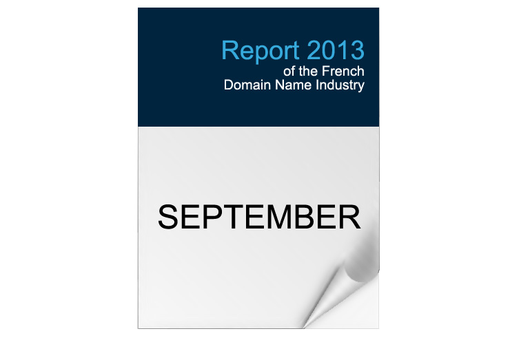 2013 Edition - French Domain Industry Report