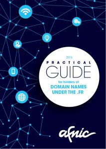 Guide domain name holder