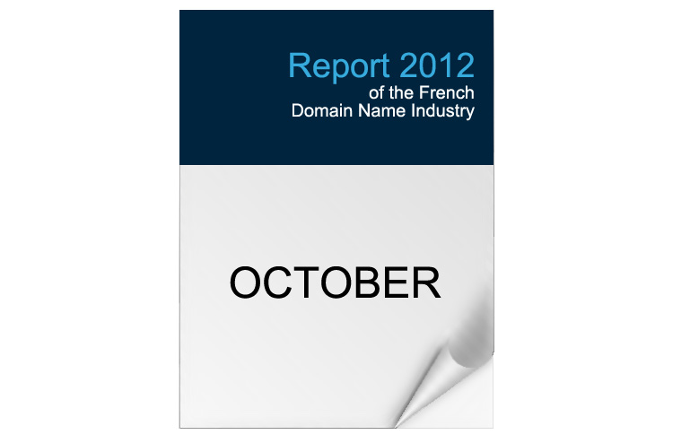 2012 Edition - French Domain Industry Report
