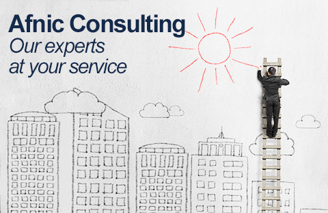 Consultancy and Expertise by Afnic
