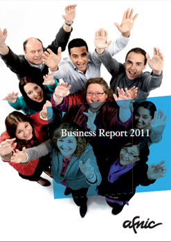Visuel Business Report 2011
